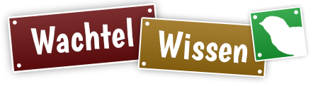 Wachtel Wissen Logo